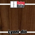 lyoni_dio